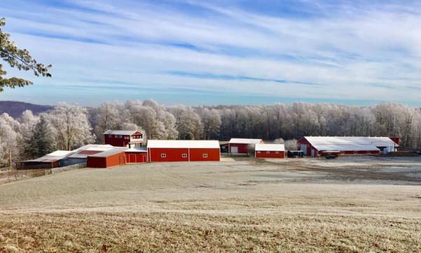 B R Farm