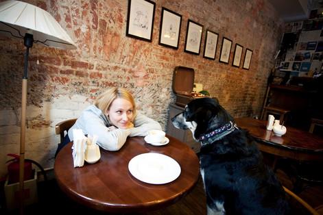 """Взгляд из-за кулис на #DogFriendly кафе глазами владельца заведения """"Хитрые люди"""""""