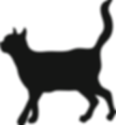 silhouette of adult cat walking