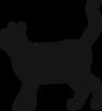 Silhouette de chat noir
