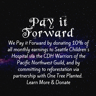 Pay it Forward.png
