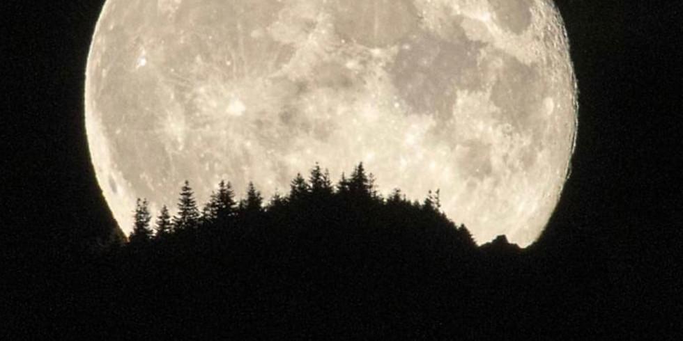 Full Moon in Virgo