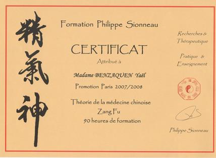 16 1-Sionneau 2007.jpeg