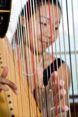 Harpist through the strings