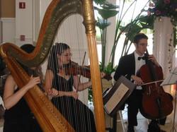 Harp Trio 2