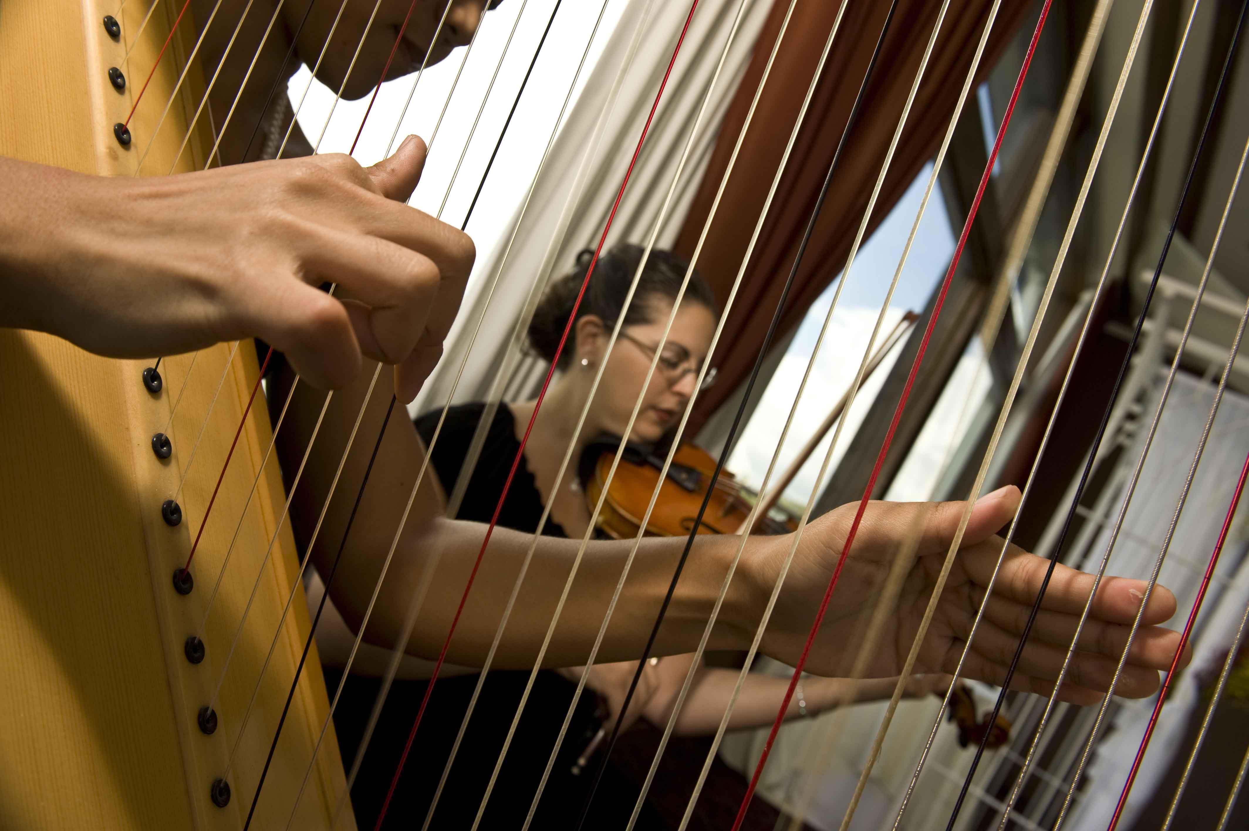 Harp _ Violin Duo