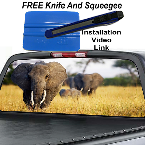 Elephants Rear Window Graphics