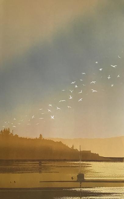 dawn flight over the loch