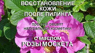 масло розы москета, роза москета, после пилинга, восстановление кожи, поврежденная кожа, кожа после пилинга, после пилинга