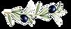 olive-fruits-251786155.png