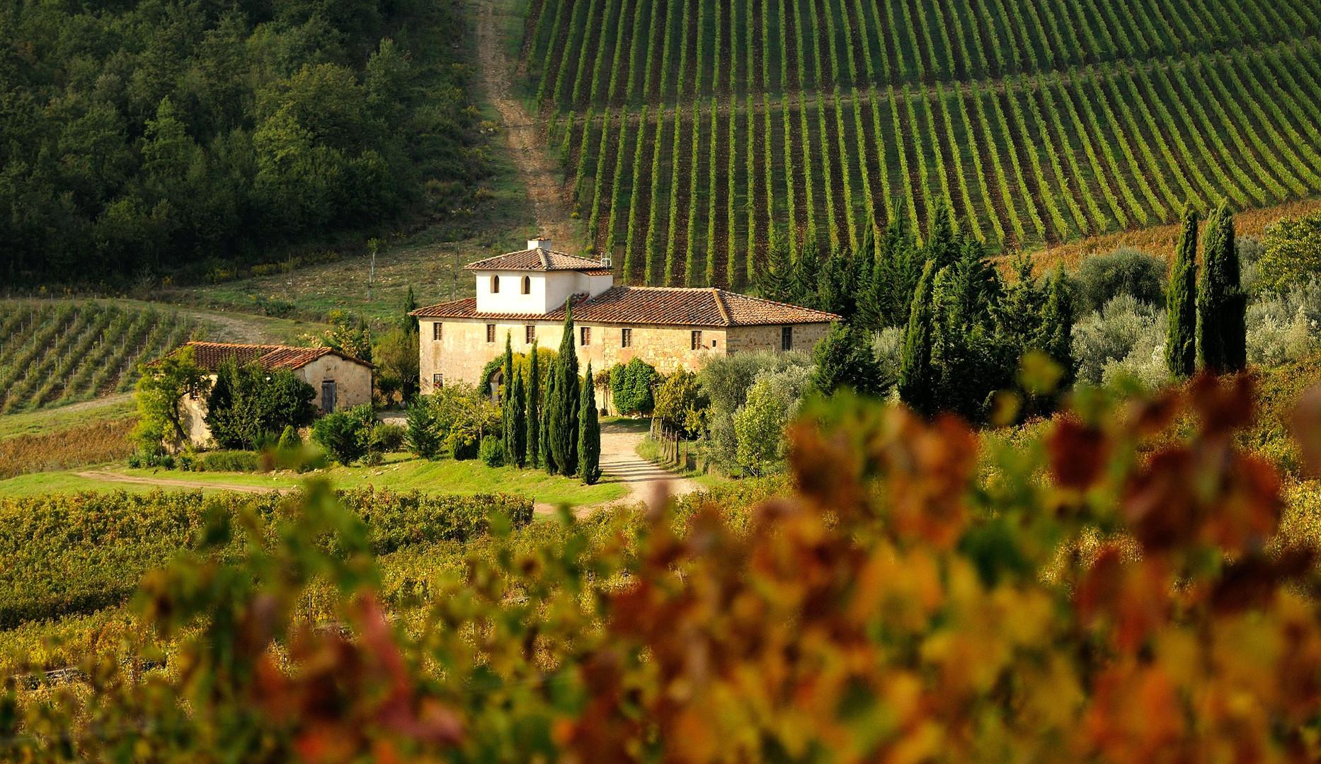 tuscany_chianti_499276306_crpd.jpg