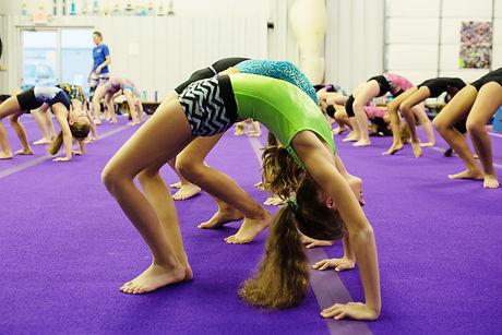 Gymnast Bridging
