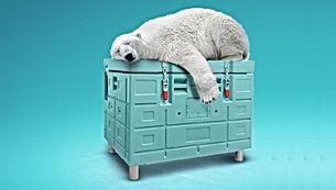 Carbon Kuru Buz Olivo Box.jpg