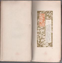 RIQUERcrisantemes18