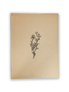 Klee (1920)