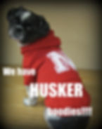 Husker Hoodies for pets, Healthy Paws