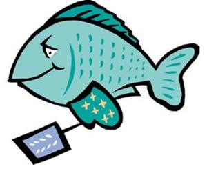 Southern Catfish Fry