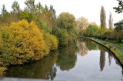 cours d'eau marchiennes