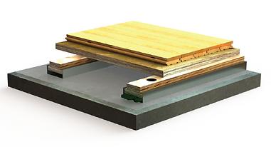 bio channel dance wood floor