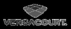 VersaCourt Logo