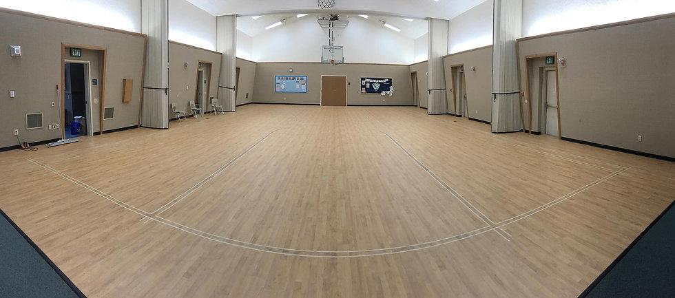 Foster Specialty Floors Omnisport vinyl flooring. Tarkett vinyl flooring