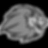 South Lyon High School logo