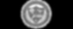 Carrboro High School crest