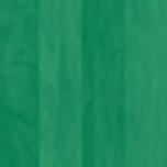MINT GREEN MAPLE
