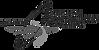 ASBA Member Logo.png