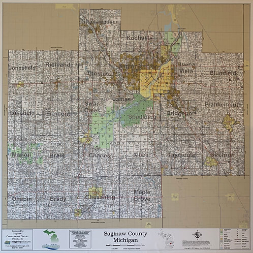 2019 Saginaw County - Peel & Stick Wall Map