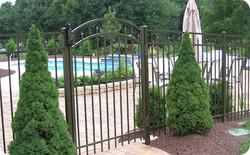 Siskin ( Arched Gate )