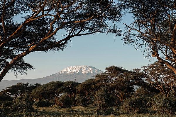 kilimandzsi.jpg