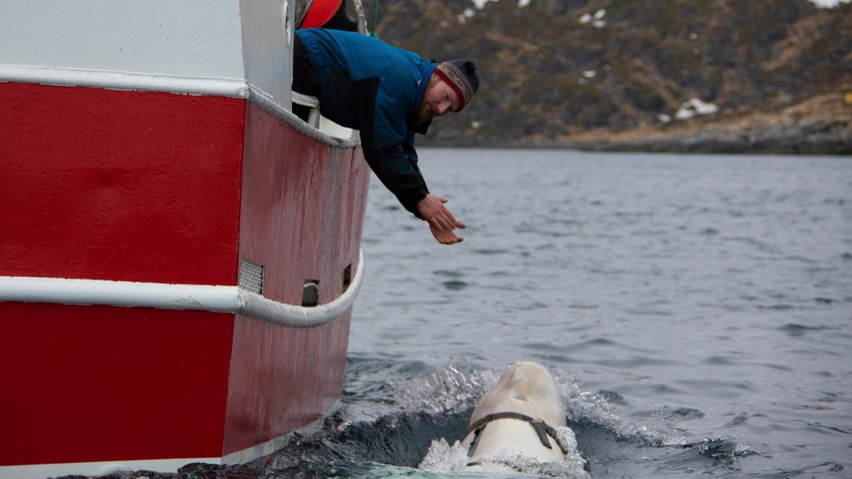 Photo-Jørgen_Ree_Wiig-AP-3.jpg