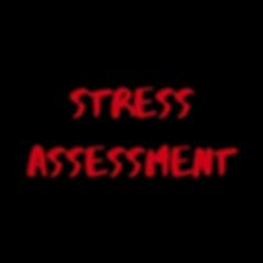 STRESS ASSESS.png