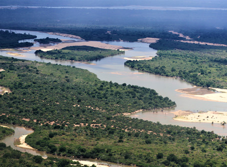Selous; water, water everywhere ...