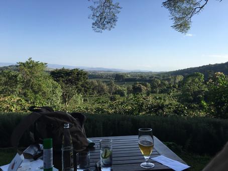 Hill Family Safari 3 - Gibb's Farm