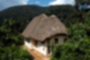 © Volcanoes Bwindi Lodge (3).jpg