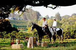 horse riding (Elewana)