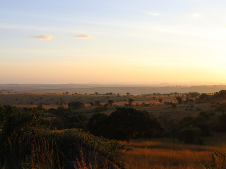 Hill Family Safari 6 - Migration - North Serengeti