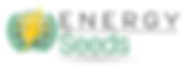 Logo Energy Seeds (1).png