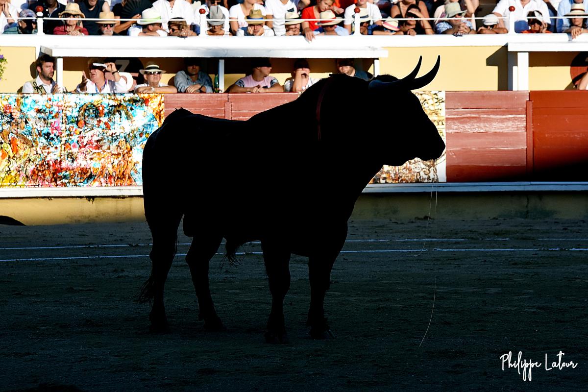 Bañuelos ©philippelatour