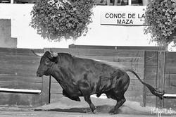 Conde de la Maza ©philippelatour