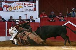 Juan Melgar ©philippelatour