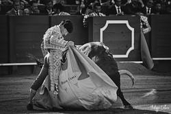 Diego Urdiales ©philippelatour