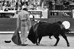 Sebastien Castella ©philipelatour