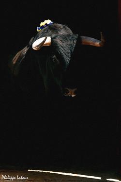 Montalvo ©philippelatour
