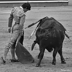 Leo Valadez ©philippelatour