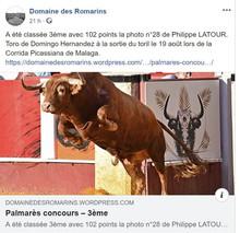 Concours Domaine des Romarins 2019