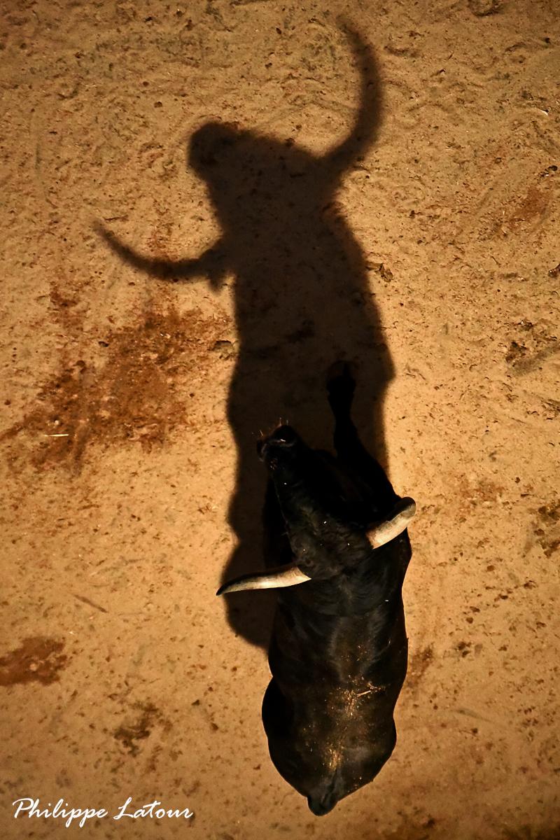 Sortir de son ombre ©philippelatour
