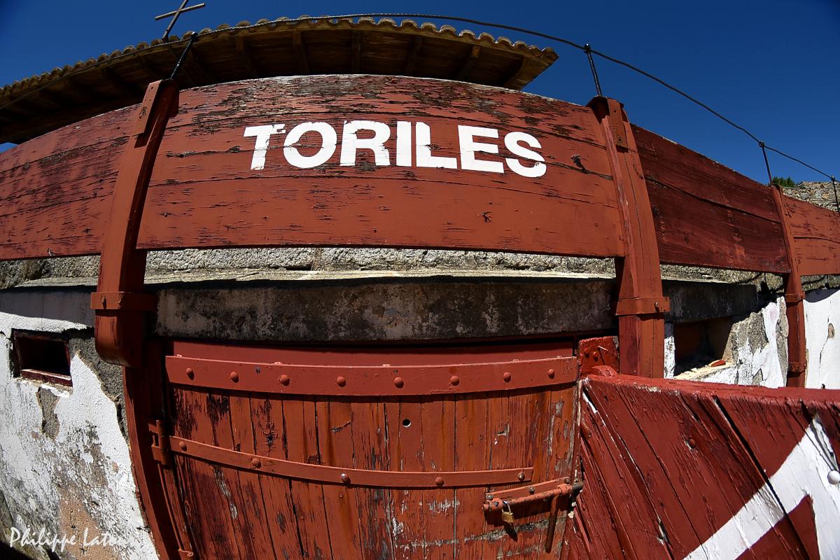 Toriles ©philippelatour